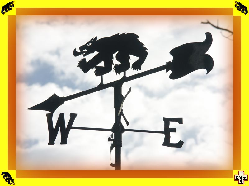 Photo: Bern Bear weathervane.